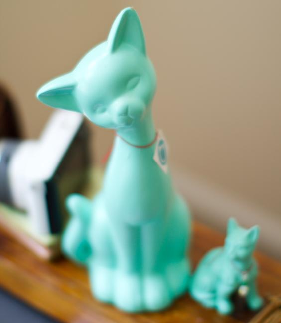 teal-kittie-project25203.jpg
