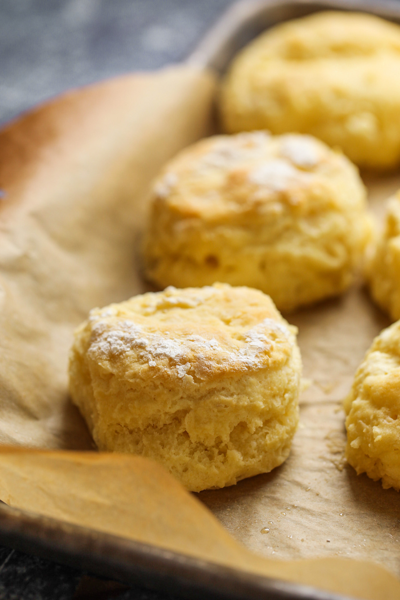 tall buttermilk biscuit in pan