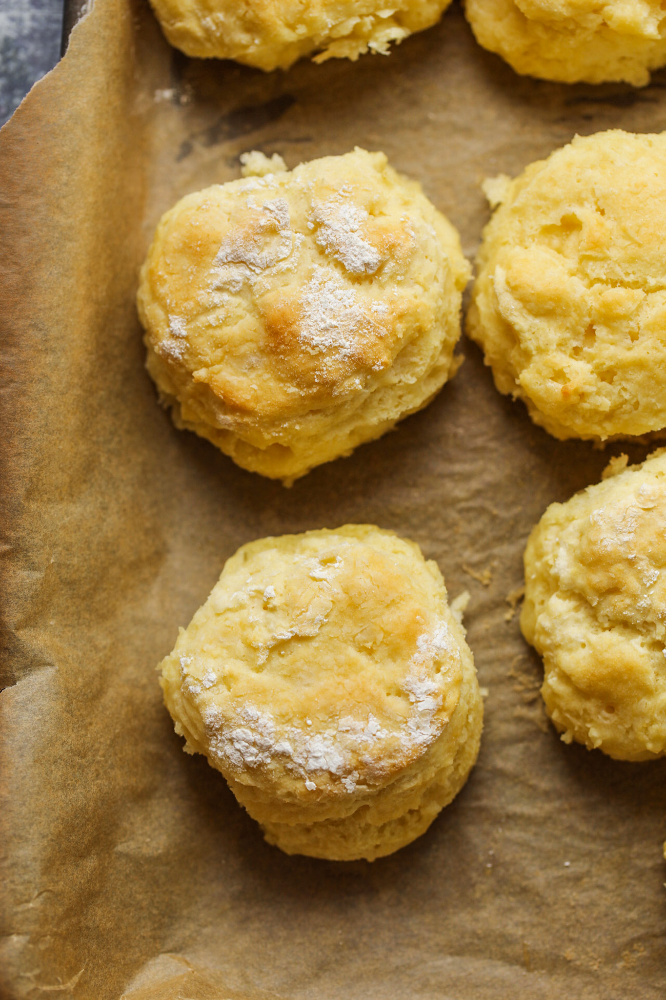 vegan buttermilk biscuits in pan with floured tops