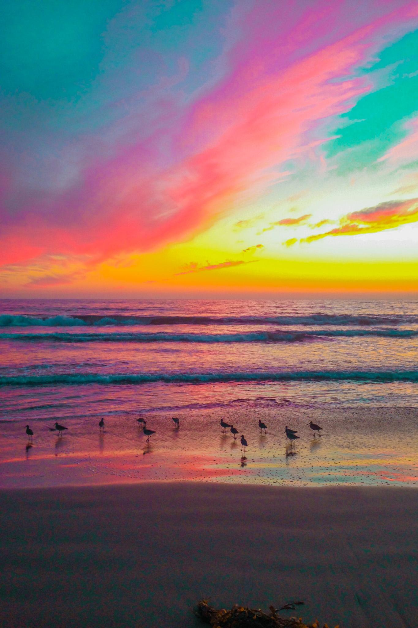 santa monica sunset beach rainbow colors and birds