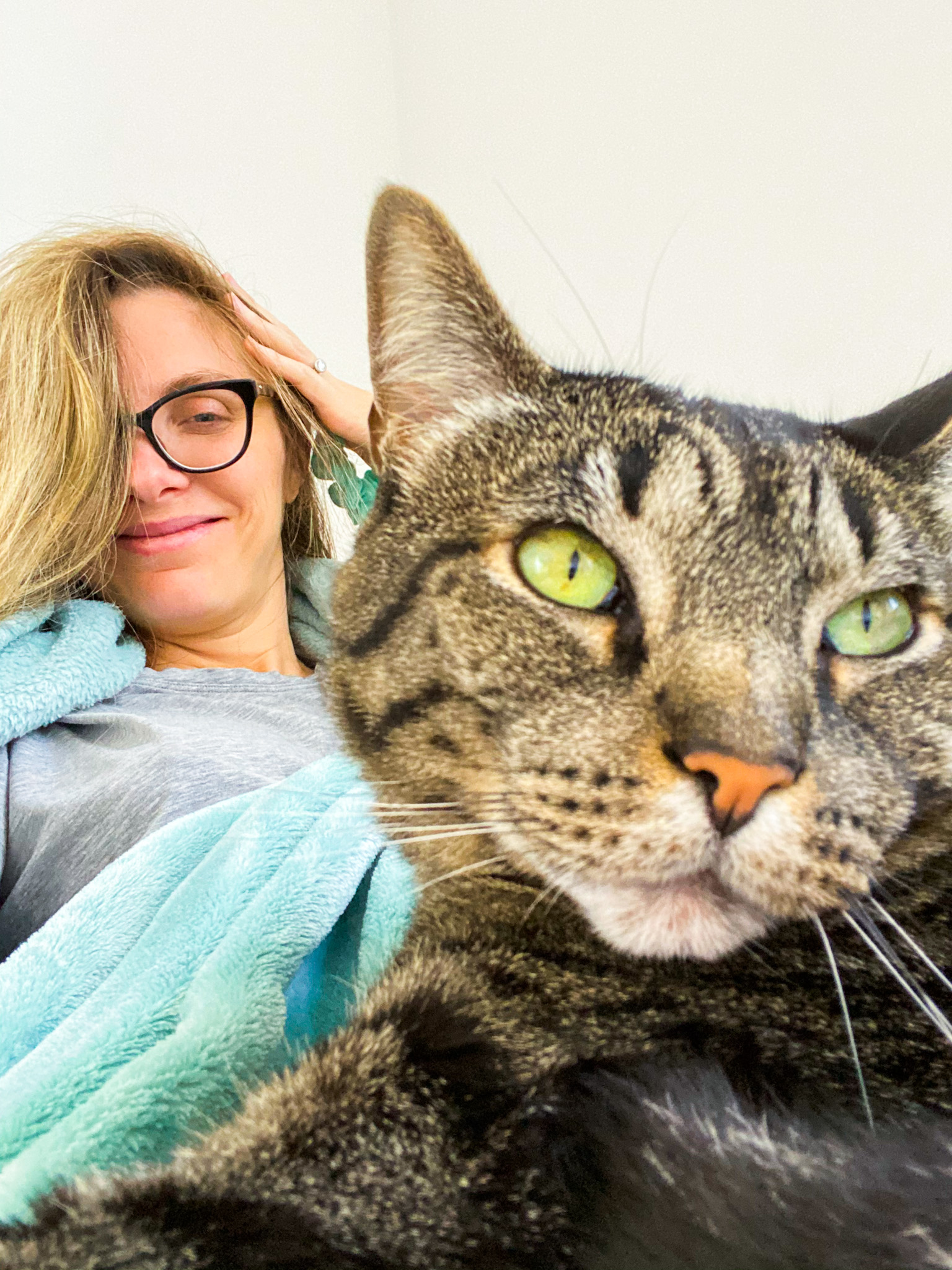sochi cat couch cuddles pregnant